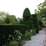Plas Brondanw Gardens - 3