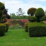 Mount Ephraim topiary garden 3