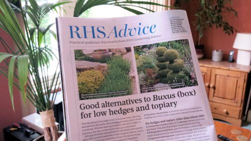 2015-07 RHS - The Garden magazine article on Buxus alternatives