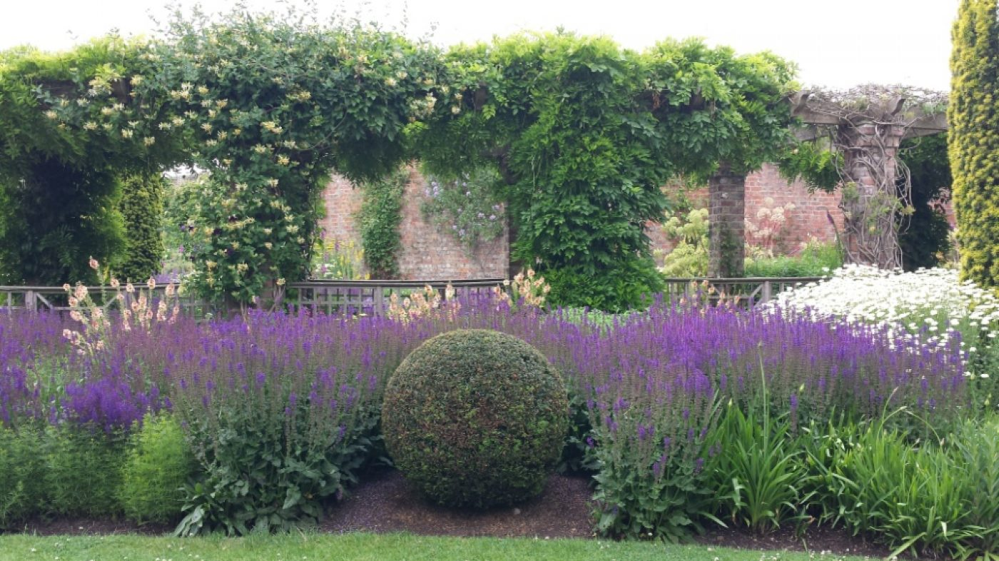 20150705 Littlethorpe Manor perfect yew ball cut by eye
