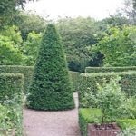 20150705 Littlethorpe Manor yew lined paths