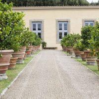 Villa Medicea di Castello-20