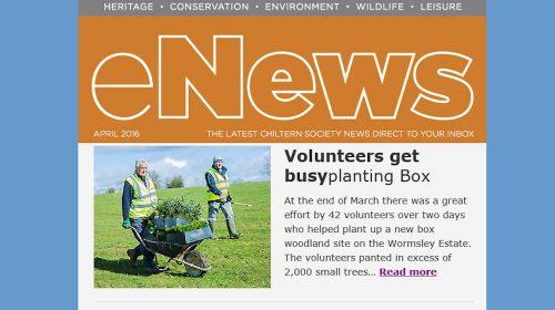 2016 04 13 eNews Busy Planting Box