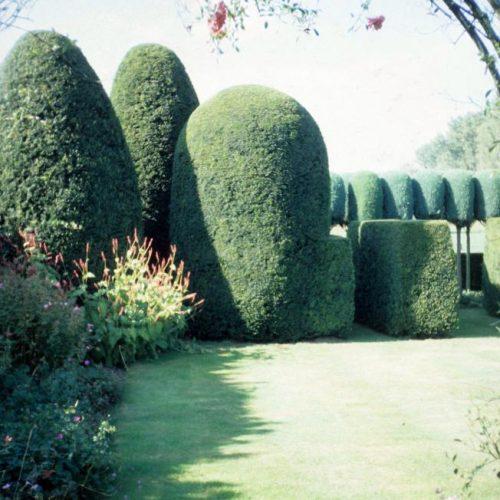 Bekaert - Belgian garden 1