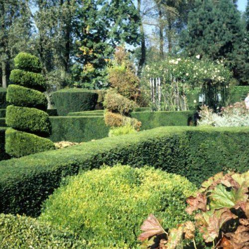 Bekaert - Belgian garden 2