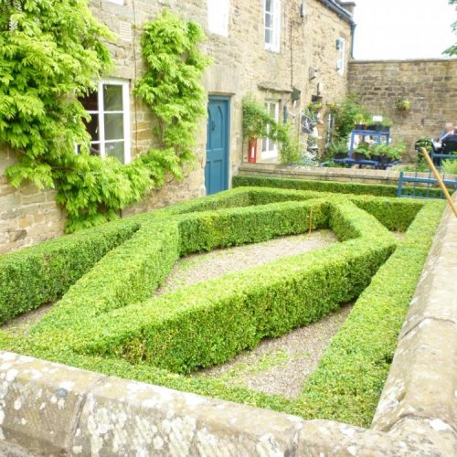 Edensor - Nr Chatworth - Derbyshire - UK - June 2009 - Boxwood (Buxus sempervirens) parterre just trimmed - cottage front garden