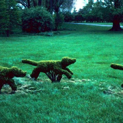 Ladew An outstanding topiary garden rare in the US is located near Baltimore Maryland - 2