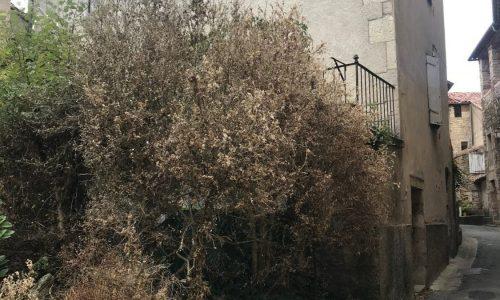 Aveyron 06