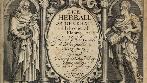 The Herball or Generall Historie of Plantes Front cover