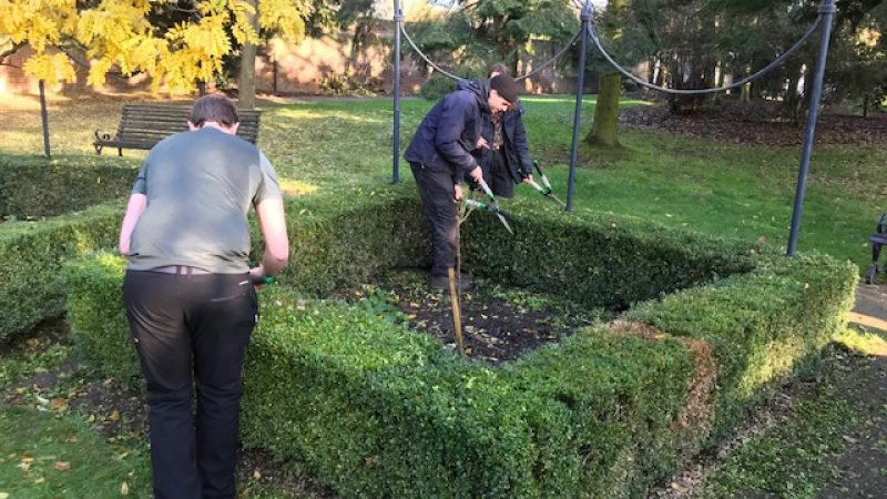 Topiary 3