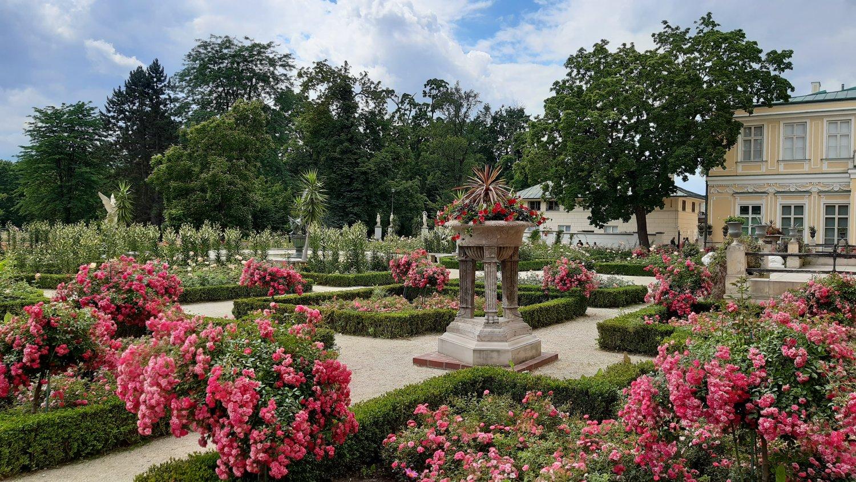 Southern Garden_Wilanów_2020 (1)