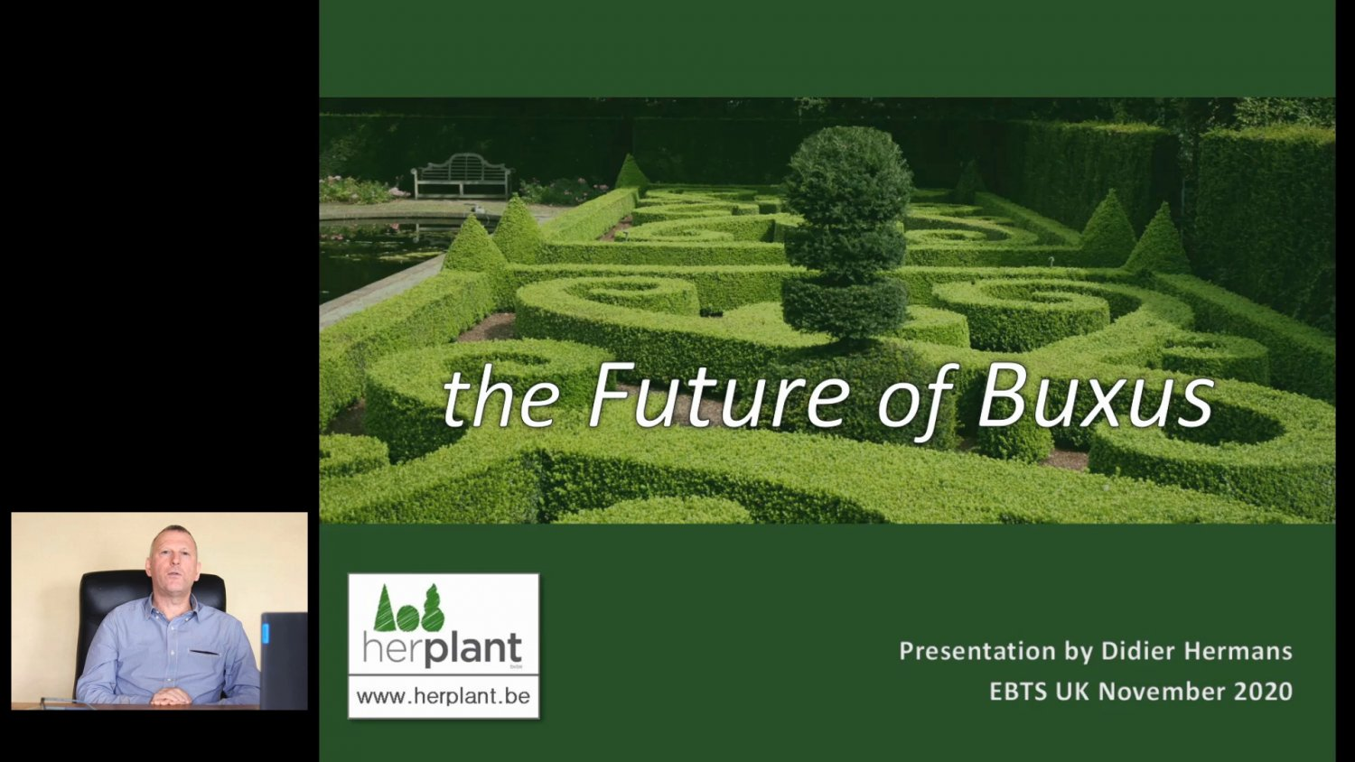 The future of Buxus HL