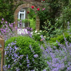 Planting detail Brunswick Gardens