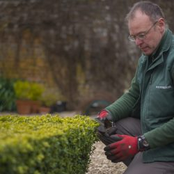 Nicholsons Garden Maintenance Team 3