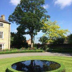 Box topiary around a reflective pool