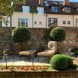 standard Laurus and Buxus shapes