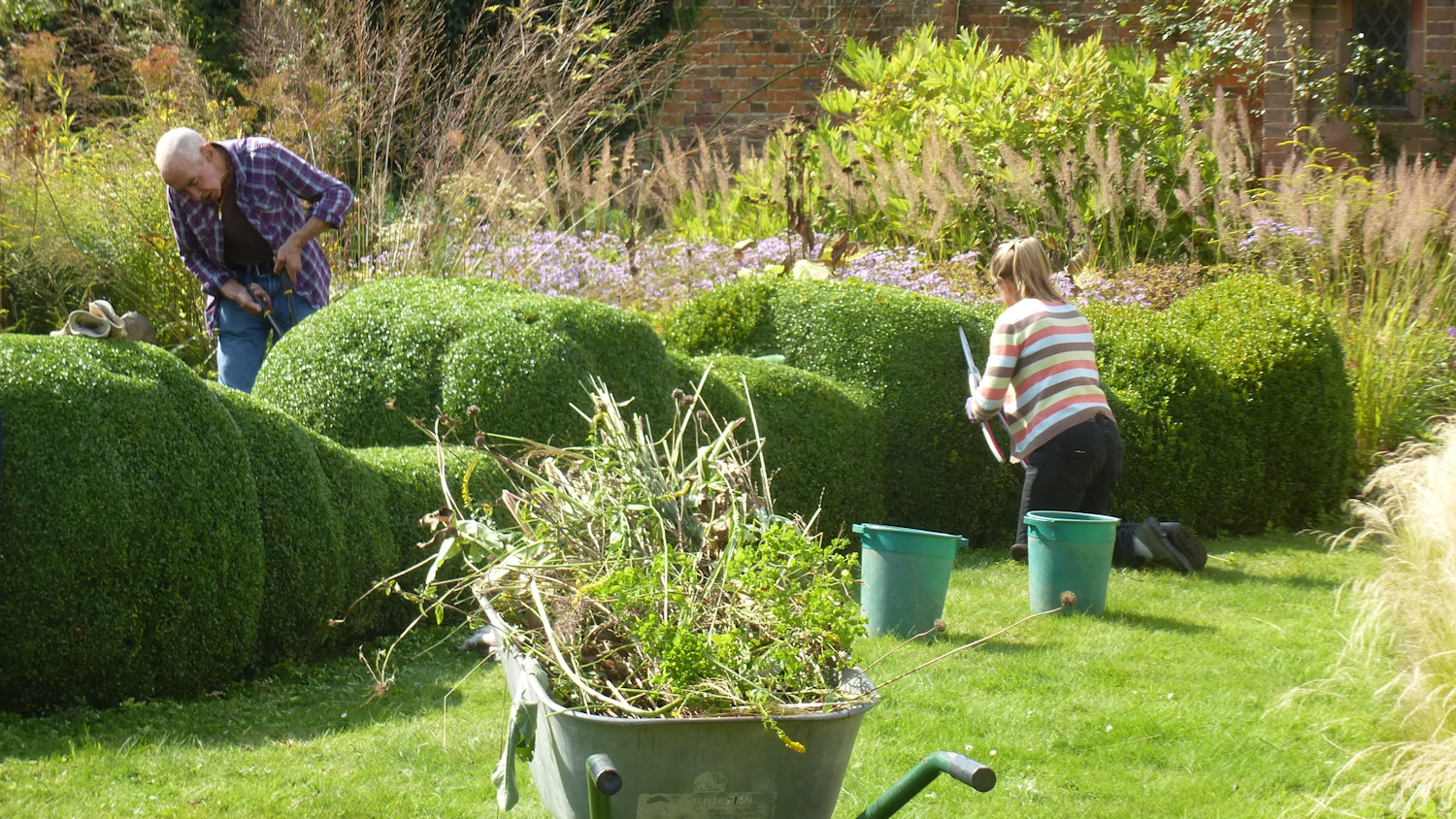 Clipping hedges HL