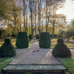 Excelsis Gardens 6