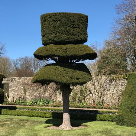 Levens Hall top hat (previously cup and saucer)