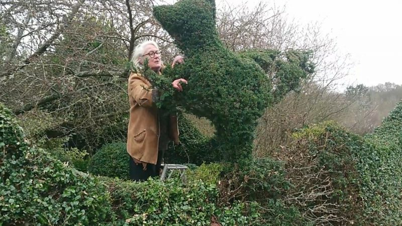 Transforming Topiary HL