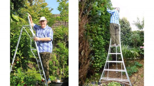 Andrew on his new Henchman Ladder HL