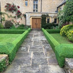 Box parterres in the Cotswolds