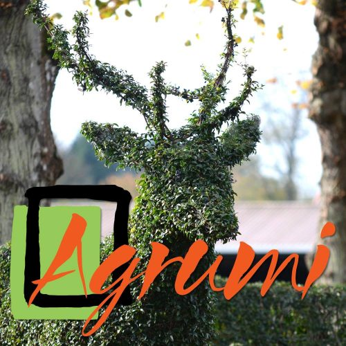 Agrumi Topiary Art – stag-with-logo