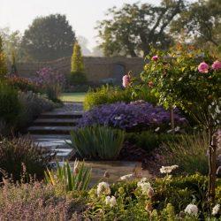 Nicholsons Garden Design